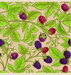 borago plant pattern on color background vector image
