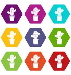 cactus icon set color hexahedron vector image
