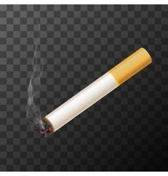 cigarette with white smoke vector image