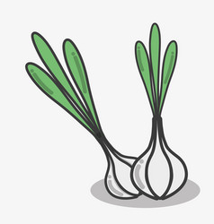 Delicious garlic vegetables food icon vector