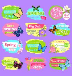 Discount spring collection vector