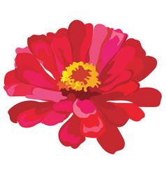 Flower 6 vector