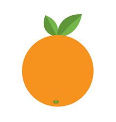 orange icon healthy food lifestyle fresh fruit vector image