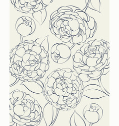 Peonies in black and white vector