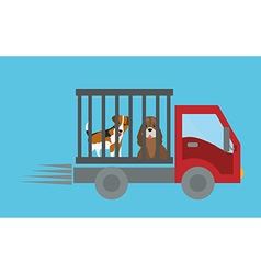 Pet care design vector image
