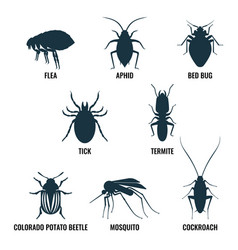 set of insects icons ant and wasp cockroach and vector image vector image