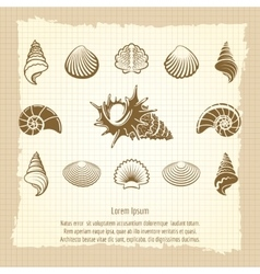 Vintage sea shell silhouettes set vector image