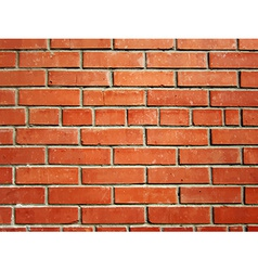 Realistic bick wall vector image
