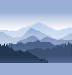 the pine trees forest vector image vector image