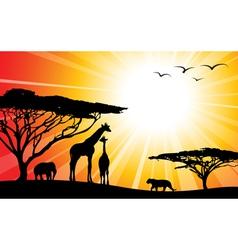 Africa safari silhouettes vector