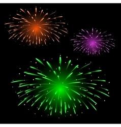 Festive colorful fireworks vector image