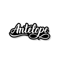 Antelope calligraphy template text for your design vector