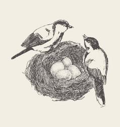 Bird in nest with chicks hand drawn sketch vector