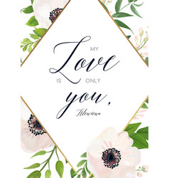 floral card design white pink anemone flower vector image vector image