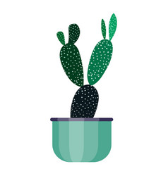 green house plant in pot leaf cactus flower flat vector image