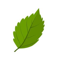 Green leaf logo icon vector