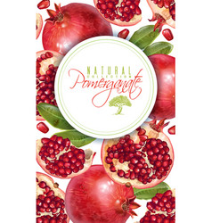Pomegranate vertical round banner vector
