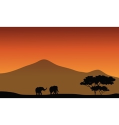 Silhouete of elephant in fields vector