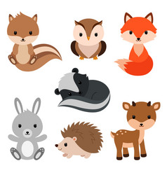 woodland animals set vector image vector image