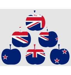 apple from New Zealand vector image