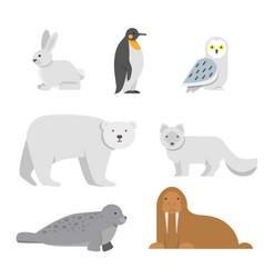 Arctic snow animals vector
