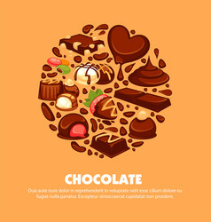 delicious chocolate products of high quality vector image