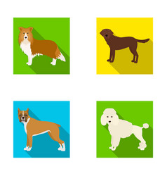 dog laika beagle and other web icon in flat vector image
