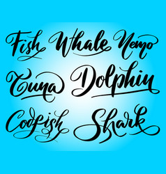 Dolphin and tuna hand written typography vector