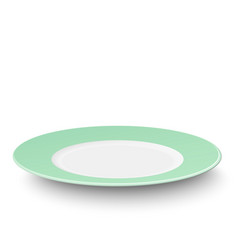 empty light green plate isolated on white vector image