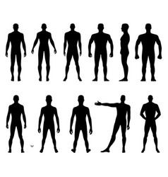 Fashion man body full length bald template figure vector