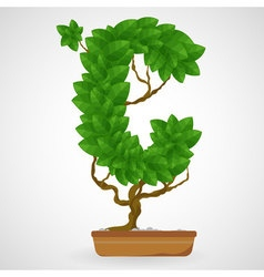 Green foliage houseplant alphabet vector