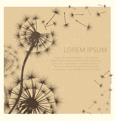 Grunge background with dandelion flowers vector