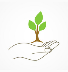 Hand holding a young tree symbol vector