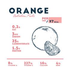 Nutrition facts orange vector