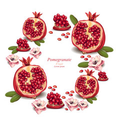 Pomegranate realistic background with place vector
