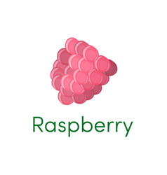 raspberry fruit icon isolated vector image