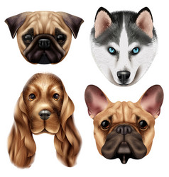 Realistic dog breed icon set vector