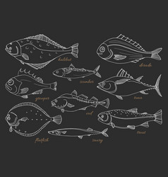 set fish black vector image