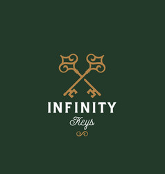 infinity keys abstract sign symbol or vector image vector image
