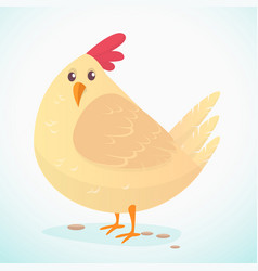 cartoon big fat hen isolated on a white vector image