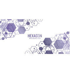 Abstract white background with hexagonal shapes vector
