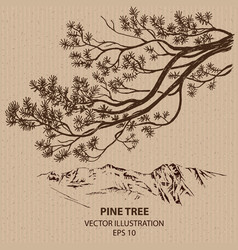 Branch of Pine Tree vector