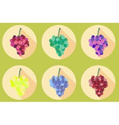 Grapes icon isolated on white background vector
