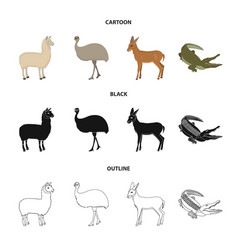 Lama ostrich emu young antelope animal vector