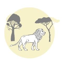 Lion between savanna trees vector image