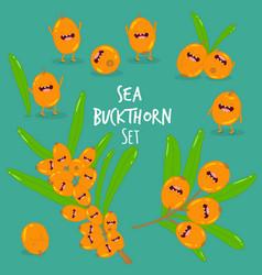 Sea buckthorn smoothies vector