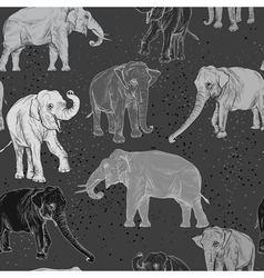 Seamless pattern with wild elephant vector image
