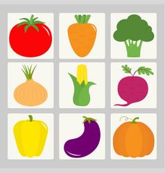 vegetable icon set tomato pepper carrot vector image