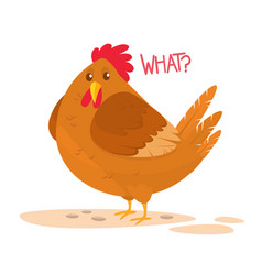 cartoon big fat hen isolated on a white backgroun vector image vector image