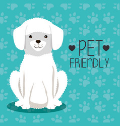 Dog bred pet friendly vector